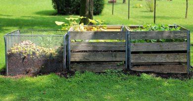Sådan vælger du den rigtige kompostbeholder